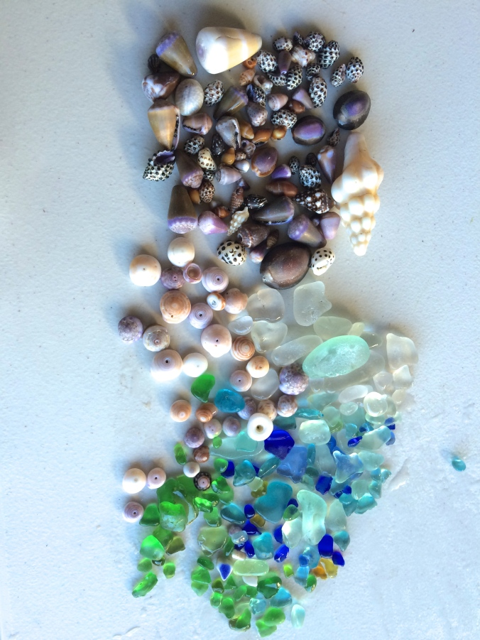 Sea glass and sea shell finds