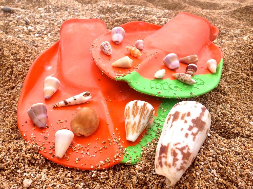 Fins.Shells