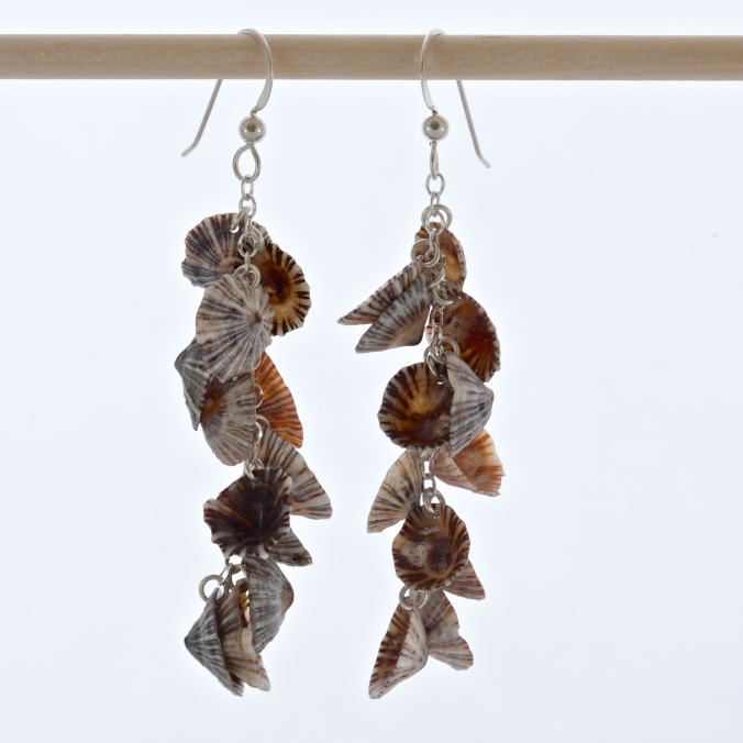 Mini Opihi Shell Earring