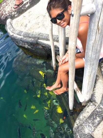 Four Seasons Hualalai Pool Kings Pond