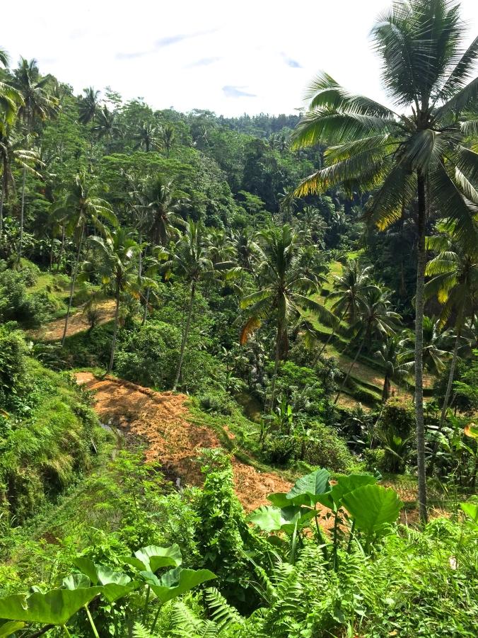 Gunung Kawi Tampaksiring